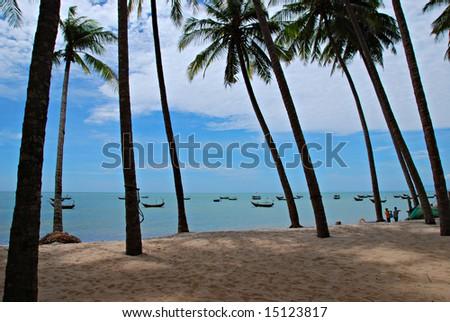 Beach with palms, vietnamese siesta - stock photo