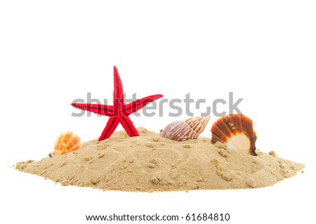 Beach with sand starfish and shells isolated over white - stock photo