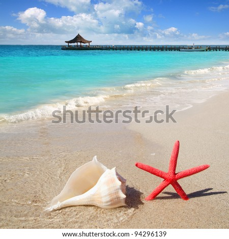 beach with starfish and seashell in white sand and tropical hut [Photo Illustration] - stock photo