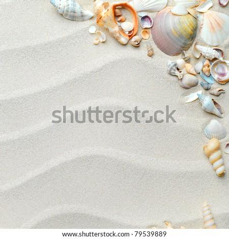 beach with starfish and seashells - stock photo