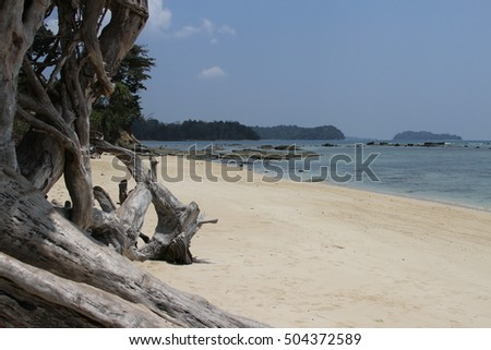beaches at the andamans, white sand and warm water