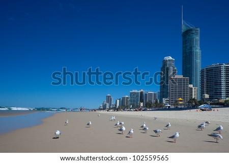 Beaches of the Gold Coast, Queensland, Australia - stock photo