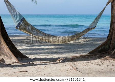 beachside hammock tied to a tree with relaxing holiday  beachside hammock tied tree relaxing holiday stock photo 781601341      rh   shutterstock