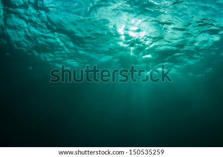 Beams of light through the waters surface  - stock photo