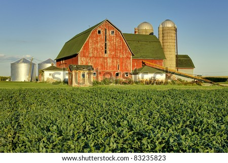 Bean field in front of a red barn and silos just west of Peotone, Illinois - stock photo