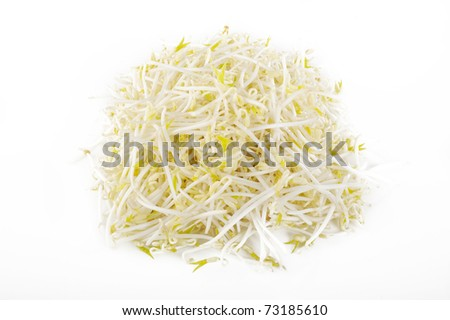 bean sprout on white background