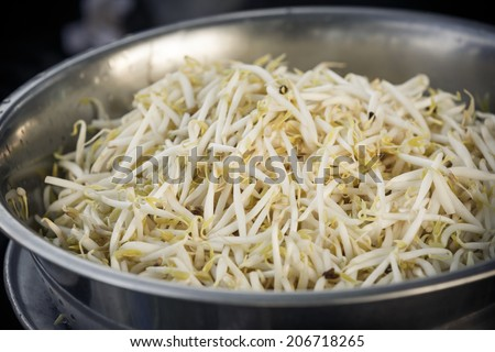 bean sprouts in stainless bowl - stock photo