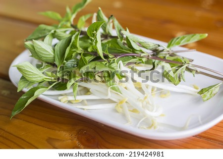 bean sprouts on plate , hors d'oeuvres - stock photo