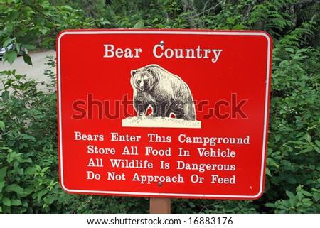 Bear Country - stock photo