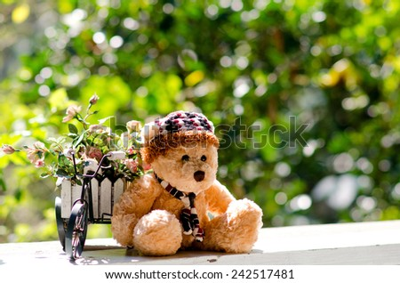 Bear doll sits on  a white wooden in nature background