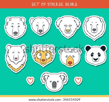 Bear set isolated heads color, lines. - stock photo