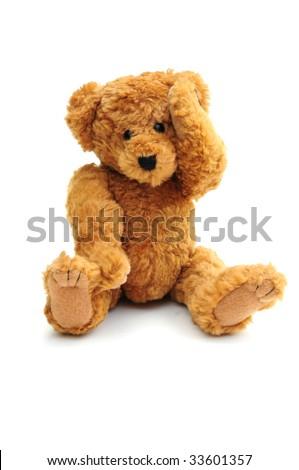 Bear with headache - stock photo