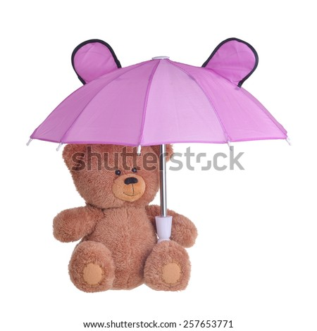 bear with umbrella isolated on white background - stock photo