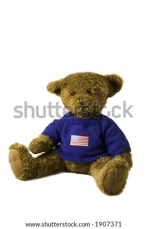 Bear with usa flag shirt - stock photo