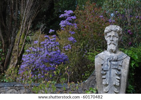 Bearded statue and a rare special purple blue rhododendron  in garden of  irish Glenveagh castle