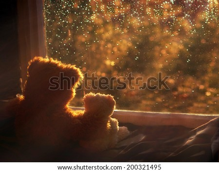 Bears in love's embrace, sitting in front of a window - stock photo