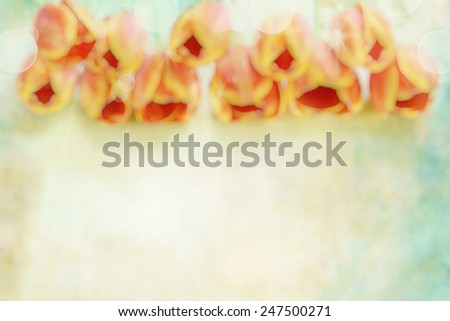 Beautiful abstract of a soft orange tulip and bokeh blur with room for copy space.  - stock photo