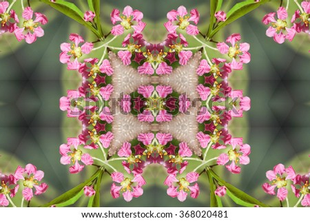 Beautiful abstract surreality pattern kaleidoscope geometric style ornament texture background made from fractal flower for use at graphic design - stock photo