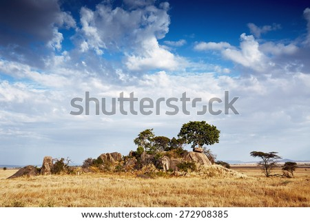 Beautiful African landscape, the Gol kopjes in the Serengeti National Park, Tanzania