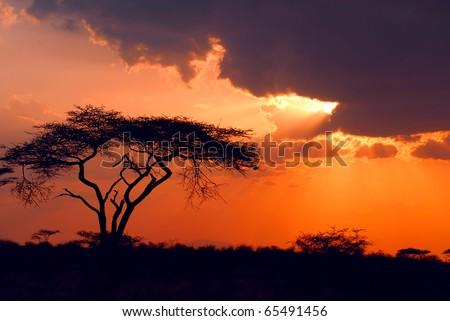 Beautiful african sunset - stock photo