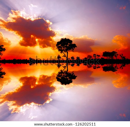 reflected picture