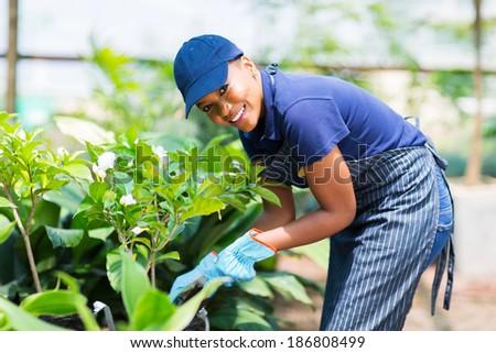 beautiful afro american woman working in nursery garden - stock photo