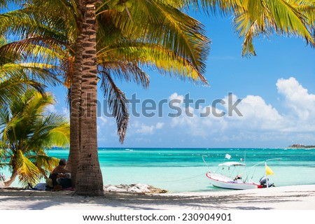 Beautiful Akumal beach in Mexico with white sand, turquoise water and palms - stock photo