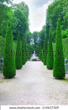 Beautiful alley in the park. - stock photo