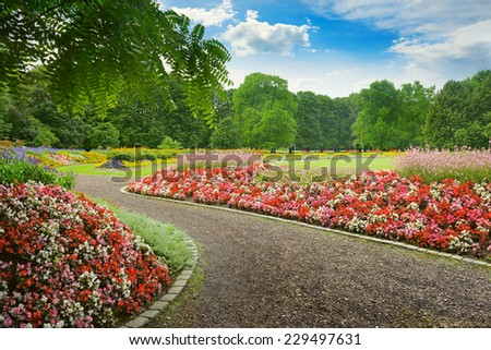 beautiful alley with blooming flowers in the park - stock photo