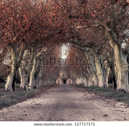 Beautiful alley with mansion in the end - stock photo