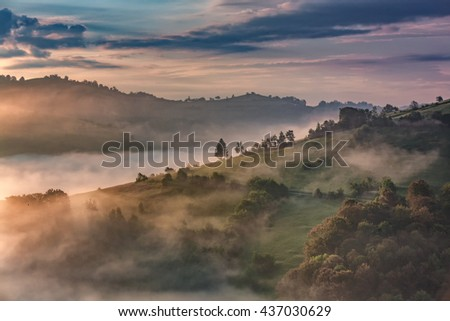 Beautiful alpine meadow with green grass.Foggy landscape on wild transylvania hills. Dramatic HDR Interpretation and light. Soft focus. Low key, dark background, spot lighting, and rich Old Masters - stock photo