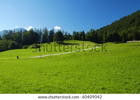 Beautiful alpine meadow with green grass with the road and forest - stock photo