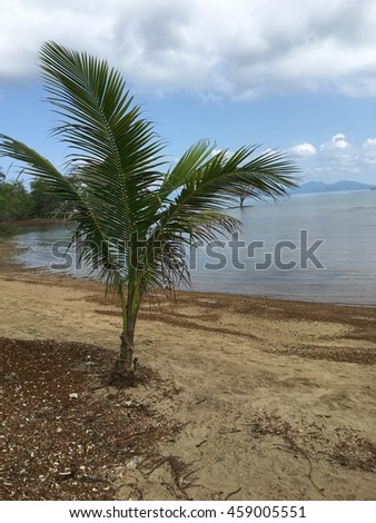 Beautiful amazing nature background. Tropical blue sun sea in Thailand . Luxury holiday resort. Island atoll about coral reef. Fresh freedom. Adventure day. Snorkeling. Coconut paradise.