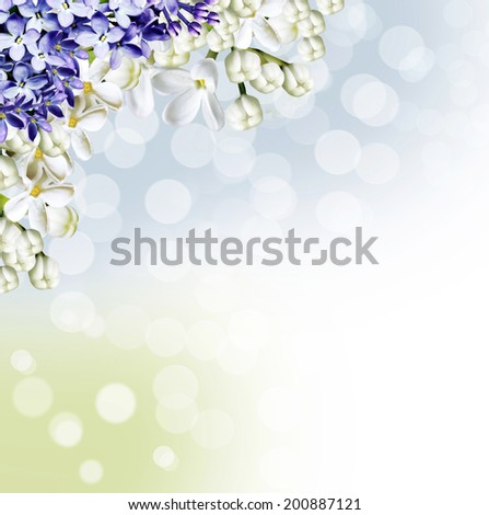 Beautiful and delicate pattern of white lilac