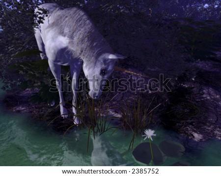 beautiful and mystic unicorn - night scene - stock photo
