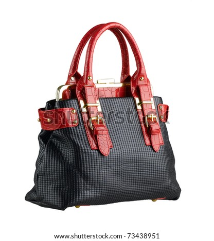 Beautiful and nice design of the lady handbag