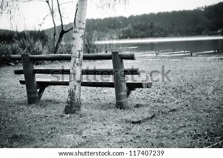 Beautiful and peaceful  black and white shot of a bench at the lake. - stock photo