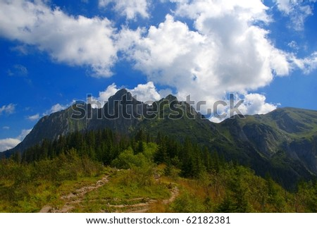Beautiful and peaceful mountain scenery in summer, Poland, Tatra Mountains