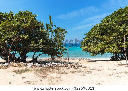 Beautiful and relaxing white sand beach in Cuba - stock photo