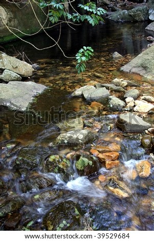 Beautiful and tranquil mountain stream flowing over rocks