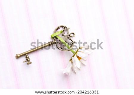 Beautiful antique key with fresh chamomile isolated on white - stock photo
