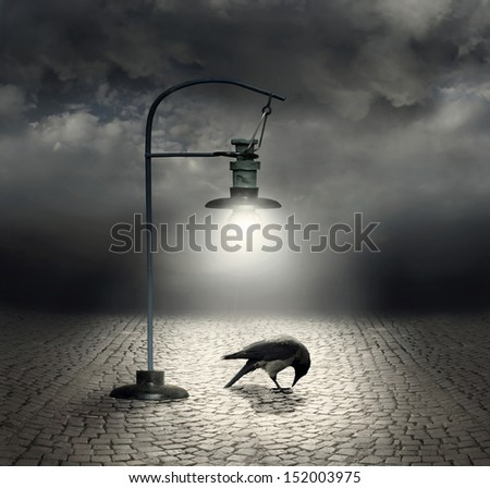 Beautiful artistic image with a streetlight that  illuminates a crow and cobblestones with a dark and cloudy sky on the background - stock photo