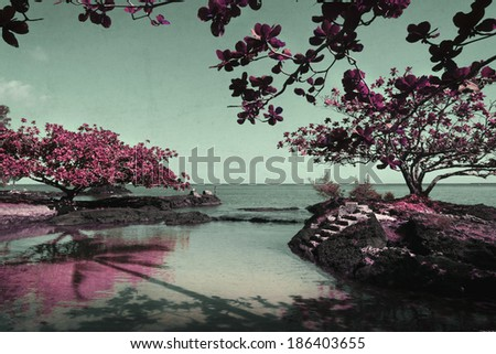 beautiful artistic nature scene with pink trees - Pink Trees