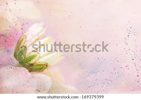 beautiful artwork with chamomile's flower and watercolor splashes - stock photo