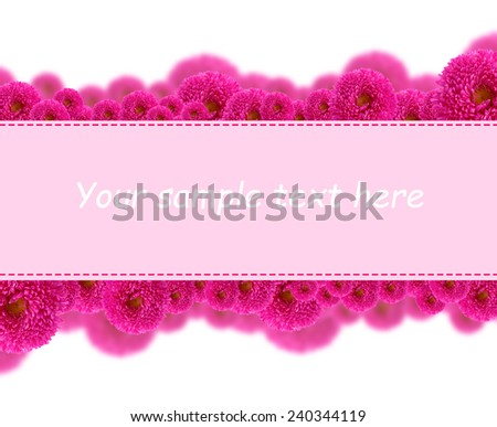 Beautiful aster flowers and card with space for your text isolated on white - stock photo
