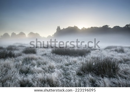 Beautiful Autumn Fall sunrise foggy landscape over frost covered field and forest - stock photo