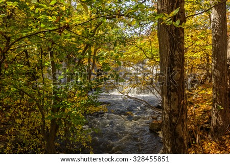 Beautiful Autumn foliage with waterfall and stream.