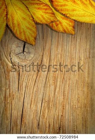 Beautiful Autumn frame.Leaves over wood - stock photo