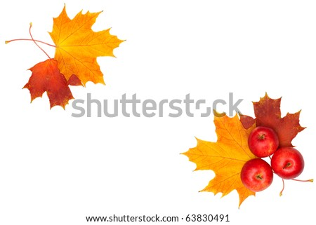 beautiful autumn frame - maple leaf and red apple isolated on white background