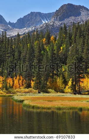 Beautiful autumn landscape. The green trees and yellow grass are reflected in the blue water of the lake - stock photo
